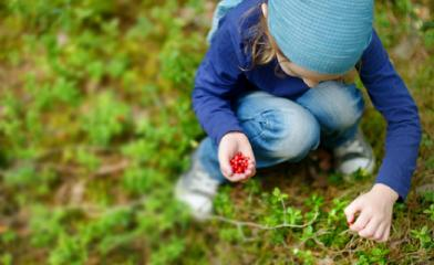Lesní mateřské školky