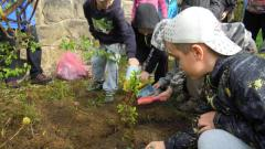 Nadace pro záchranu a obnovu Jizerských hor vyhlásila další ročník grantového programu